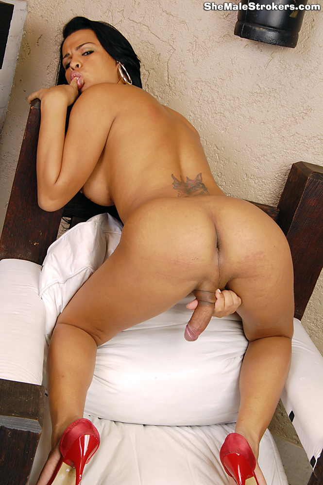 big ass shemale porn № 76813