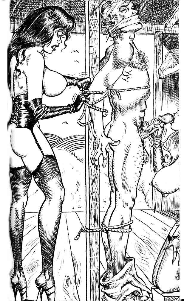Cbt femdom art cartoons