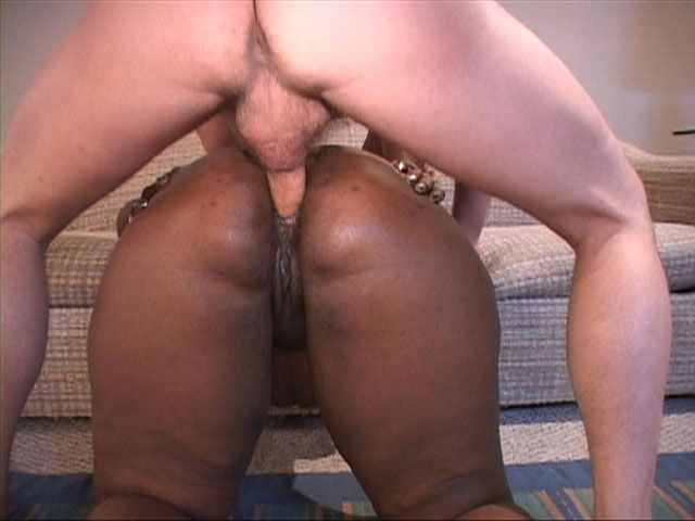 Black fat mom opens her back door for white boner - Picture 2