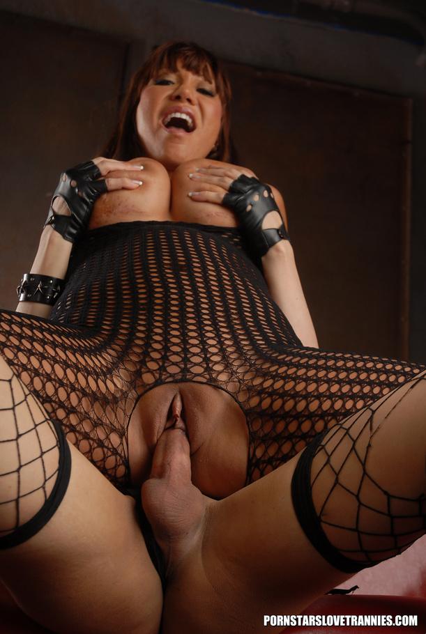 Huge dick tranny in fishnets banging