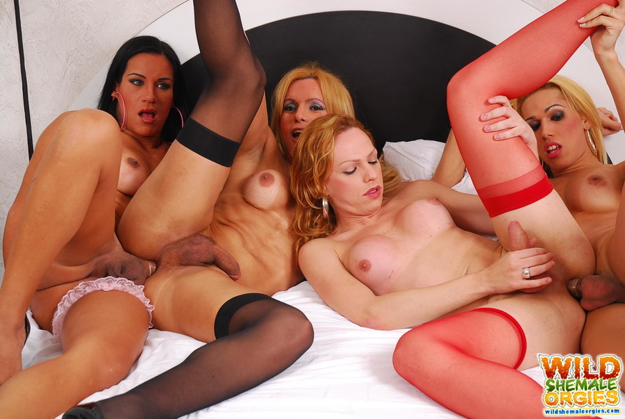 Hot shemale orgies