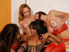 Horny shemale take turns sucking girl - XXX Dessert - Picture 9