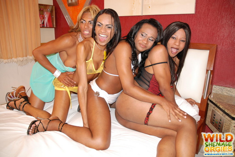 black shemale orgies Xxx