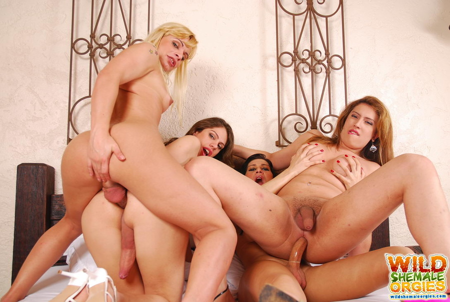 big boobs orgy