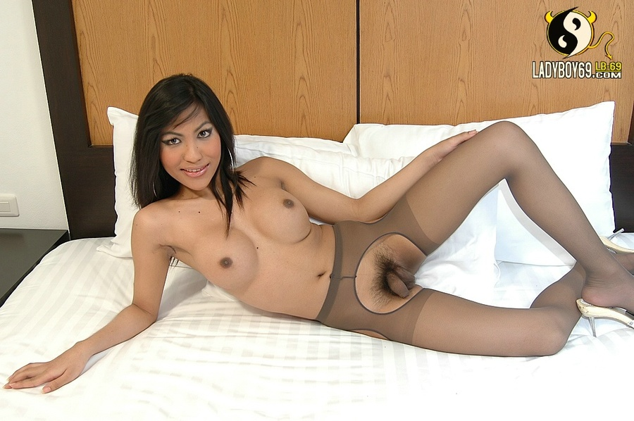 Have hit asian shemail in pantyhose pics sorry