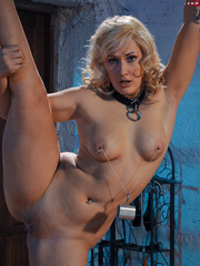 Blonde flexible slave with yummy boobs gets her nipples - Picture 5