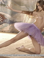 Tags: Athletic, ballerina, ballet, dancer, - XXX Dessert - Picture 8