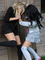 Blonde cutie Amy Green in sexy black socks gets sripped by Kayleigh Wi.. - picture 1
