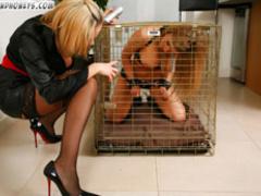 Humiliated in cage blonde slave chick gets collared and - Picture 1