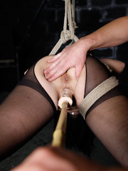 Slut in a suit case wants to be torured - XXX Dessert - Picture 5