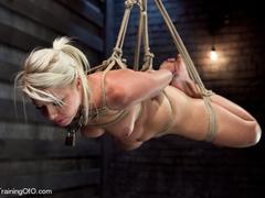 Blonde ponytailed bitch roped in karada style gets - XXXonXXX - Pic 3