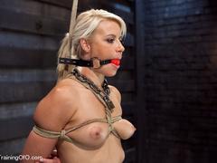 Blonde ponytailed bitch roped in karada style gets - XXXonXXX - Pic 12