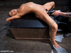Brunette hot chick roped and hang with pin all - XXXonXXX - Pic 11