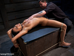 Brunette hot chick roped and hang with pin all - XXXonXXX - Pic 13