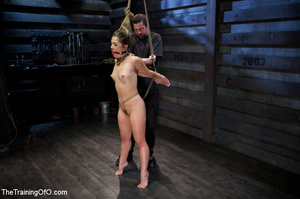 Hot chick with a gag-ball and her feet stretched and shackled gets fucked hard with a dildo stick - XXXonXXX - Pic 8