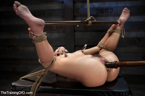 Hot chick with a gag-ball and her feet stretched and shackled gets fucked hard with a dildo stick - XXXonXXX - Pic 14