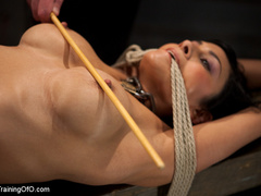 Blonde slave girl with a shinju and clover clamps - XXXonXXX - Pic 6