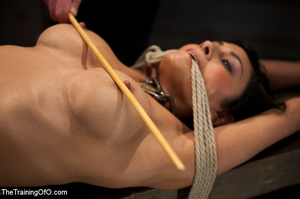 Blonde slave girl with a shinju and clover clamps on her tits gets her cooch fisted hard by her mistress and forced to lick her cunt - XXXonXXX - Pic 6