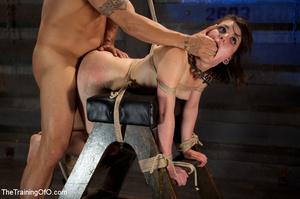 Brunette chick with shinju and neck hanged forced to jump on her master's boner - XXXonXXX - Pic 9