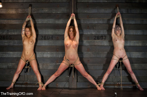Three stretched and bound tgether girls gets flogged before torturing and fucking in the bdsm basement - XXXonXXX - Pic 2