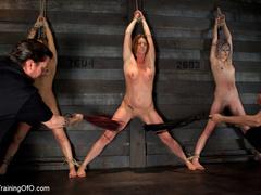 Three stretched and bound tgether girls gets - XXXonXXX - Pic 3