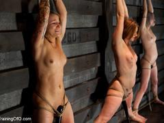 Three stretched and bound tgether girls gets - XXXonXXX - Pic 5