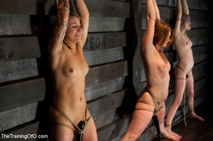 Three stretched and bound tgether girls gets flogged before torturing and fucking in the bdsm basement - XXXonXXX - Pic 5