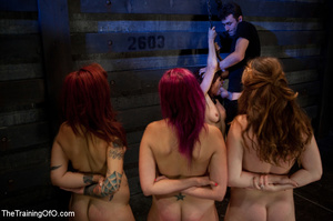 Four nice girls having test assignments in their hard bdsm training - XXXonXXX - Pic 3