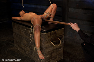 Hot Asian chick roped and suspended punished badly with electricity by her bdsm master - XXXonXXX - Pic 9