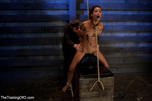 Hot Asian chick roped and suspended punished badly with electricity by her bdsm master - XXXonXXX - Pic 14