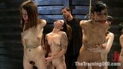 new enslaved girls having
