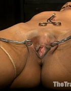 Ebony chick with a gag-ball and shinju cumming…