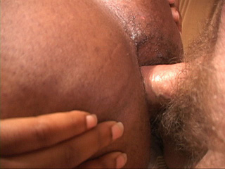 Dude screws his hairy cock into hot chubby black ass - Picture 1
