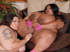 Black and white fatties in sexy lingerie playing lesbian - Picture 10
