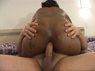 Bootylicious black chick assfucked - Picture 1