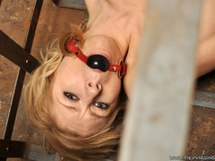 Blonde virgin slut pleads with her eyes as she is - XXXonXXX - Pic 9