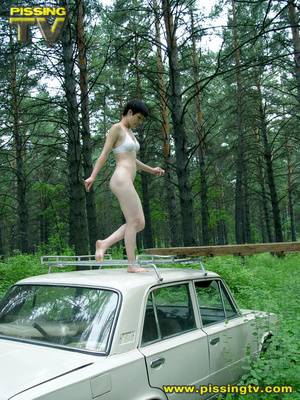 Daring brunette teen balances on a ladder proped on two cars, squats and relieves herself right there with out caring as to who is watching her - XXXonXXX - Pic 2