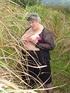 Granny Grandma Libby from United Kingdom Flax…