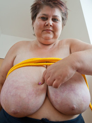 Short-haired mature bitch plying with a yellow rope - Picture 7