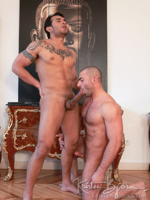 Hairy gay just loves to get his gorgeous ass hardcore pounded. - XXXonXXX - Pic 11