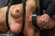 brutal guy bounds and