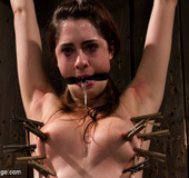 Chick in sweet pain as she is pegged, bound tight and clipped on tender
