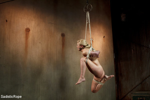 Guy in black ties blonde with rope, susp - XXX Dessert - Picture 1