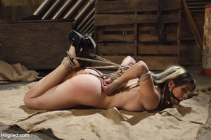 Sweet lass gets roped, pegged on tits an - XXX Dessert - Picture 2