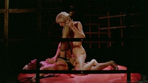 Vintage babes getting fucked in doggy and missionary positions while others get their pussies eaten and stuffed with big toys. - XXXonXXX - Pic 5