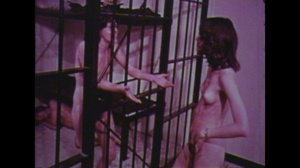 Vintage chicks munching dicks and gets their pussies licked while others get their cracks ripped as they bounce hard on huge cocks and some lesbos rub each others pussies. - XXXonXXX - Pic 9