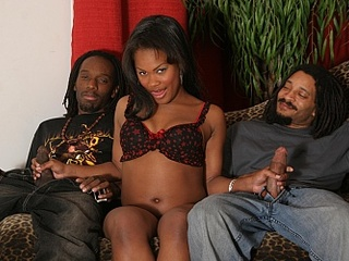 All kinds of chocolate chicks presenting themselves and - Picture 6
