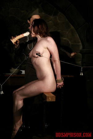 Seated naked chick gets her nipples clamped, weights are hung and then fed with a dildo. - XXXonXXX - Pic 15