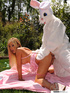 Dirty blonde in pink sucks and fucks cock of guy in white rabbit costume