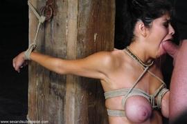bondage, dick, latina, rough sex